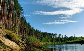 «Уникальные места Республики  Марий Эл»