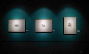 Выставки и конкурсы