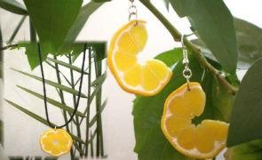Лимонные дольки