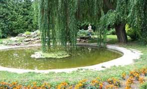 Сады и рощи